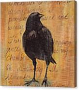Nevermore I  Canvas Print
