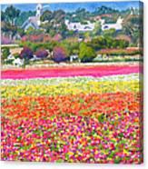 New Carlsbad Flower Fields Canvas Print