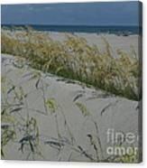 New Dunes On The Atlantic Canvas Print