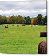 New England Hay Bales Canvas Print