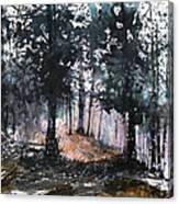 New England Landscape No.214 Canvas Print