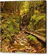 New England Waterfall Gorge Canvas Print