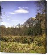 New England Wetland Canvas Print