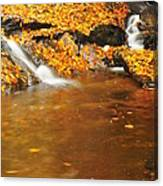 New Hampshire Stream Canvas Print
