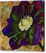 New Hue Canvas Print