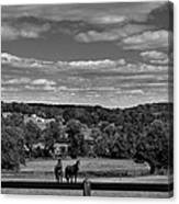New Jersey Landscape With Horses Canvas Print