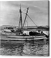 New Marretimo Purse Seiner Monterey Bay Circa 1947 Canvas Print