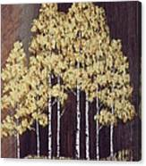 New Mexico Aspens 1 Canvas Print