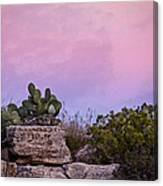 New Mexico Sunset With Cacti Canvas Print