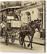 New Orleans - Carriage Ride Sepia Canvas Print