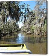 New Orleans - Swamp Boat Ride - 1212123 Canvas Print