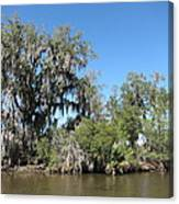 New Orleans - Swamp Boat Ride - 1212132 Canvas Print