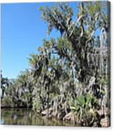 New Orleans - Swamp Boat Ride - 1212135 Canvas Print