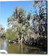 New Orleans - Swamp Boat Ride - 1212141 Canvas Print