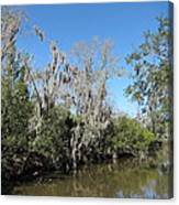 New Orleans - Swamp Boat Ride - 1212146 Canvas Print