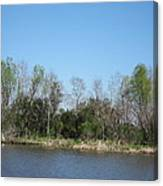 New Orleans - Swamp Boat Ride - 1212161 Canvas Print