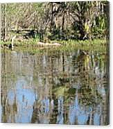 New Orleans - Swamp Boat Ride - 121249 Canvas Print