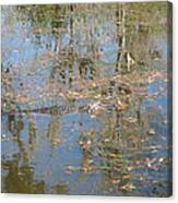 New Orleans - Swamp Boat Ride - 121262 Canvas Print