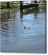 New Orleans - Swamp Boat Ride - 121276 Canvas Print