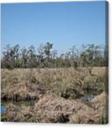New Orleans - Swamp Boat Ride - 121292 Canvas Print