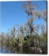 New Orleans - Swamp Boat Ride - 121295 Canvas Print