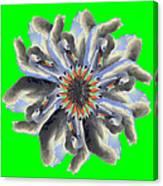 New Photographic Art Print For Sale Pop Art Swan Flower On Green Canvas Print