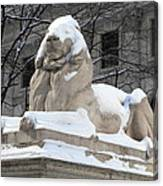 New York Public Library Lion Canvas Print