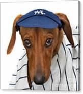 New York Yankee Hotdog Canvas Print