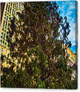 New York's Holiday Tree Canvas Print