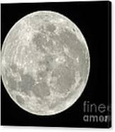 New Zealand Moon Canvas Print
