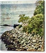 Newport Cliff Walk Canvas Print