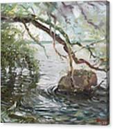 Niagara River Side Canvas Print