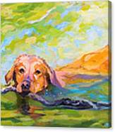 Nice Day For A Swim Canvas Print