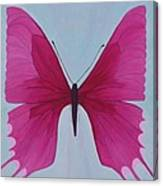Nicole's Butterfly Canvas Print