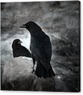 Mysterious Night Crows Canvas Print