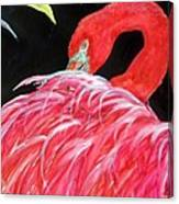 Night Flamingo Canvas Print