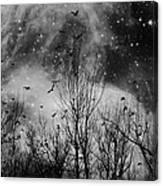 Burst Of The Night Flight Canvas Print