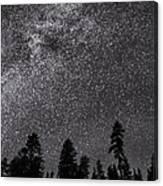 Night Serenity Canvas Print