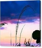 Night Silhouette Canvas Print