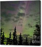Night Sky With Northern Lights Display Canvas Print