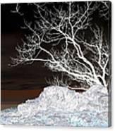 Nightfall Negative Canvas Print