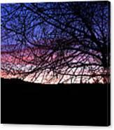 Nightfall Canvas Print