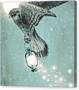 Nighthawk Canvas Print