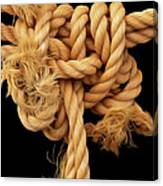 Nightmare Knot Canvas Print