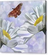 Nights In White Silk 2 Canvas Print