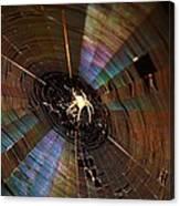 Nighttime Spider Web Canvas Print
