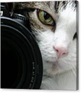 Nikon Kitty Canvas Print
