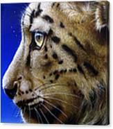 Nina The Snow Leopard Canvas Print