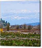 Nisqually Delta Of The Nisqually National Wildlife Refuge Canvas Print