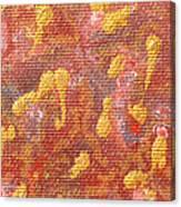 No 27 Brocade Canvas Print